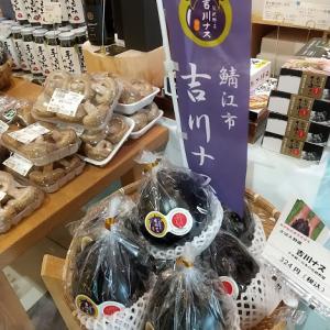福井市観光物産館・福福館で開催中の「吉川ナスフェア」に行ってきました!