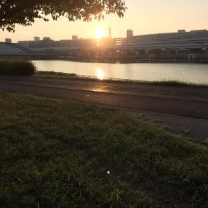朝陽の中のお散歩と桃のパスタ♪