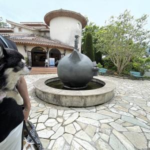愛犬と一緒に「星の王子さまミュージアム」でテラスランチ♪