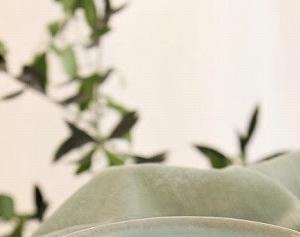 ほやとそら豆の新緑スープ 〜生活情報誌 RaKu:Me 2020年5月号〜