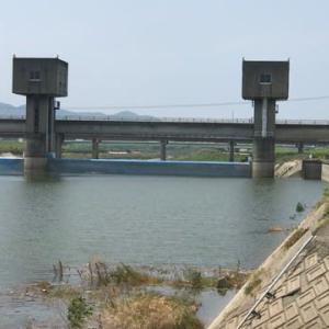 福岡県英彦山川 開幕してますね