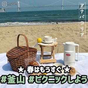 もうすぐ春!釜山でピクニックしよう♪