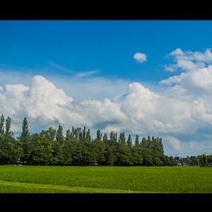 田園風景と モクモク上がる夏雲
