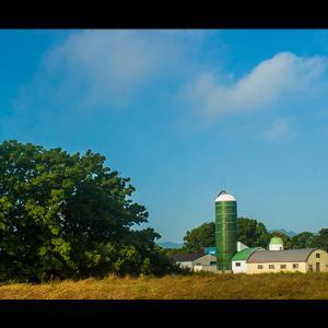 緑に囲まれた牧場