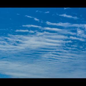 恐竜の骨格みたいな雲の形
