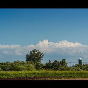牧場が見える夏雲の湧き立つ風景
