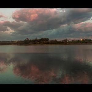 茨戸川の早朝の水面