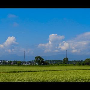穀倉地帯の夏雲