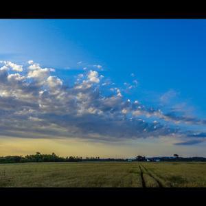 余り見た事のない種類の雲の群