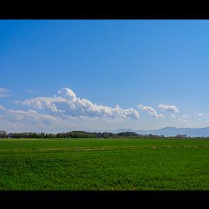遥かなる空に真夏の雲