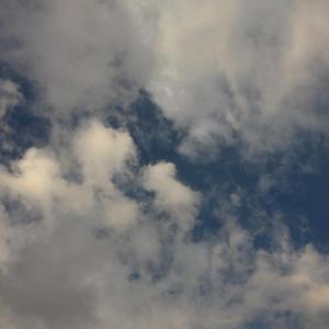 #虹 #鹿児島 #空