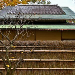 14.4℃曇り空の肌寒い一日となりました。午前中に松花堂庭園に出かけ、午後からは京都の現像所でのプリントチェックに行ってきました。