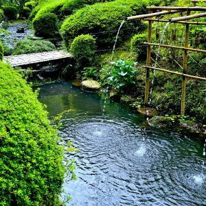 27.3℃朝は晴れでしたが昼からは曇りの一日となりました。昼前に松花堂庭園に出かけた後、京都市内に出かけてきました。