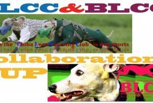2019/11/17 BLCC CLCC合同大会無事終了しました。