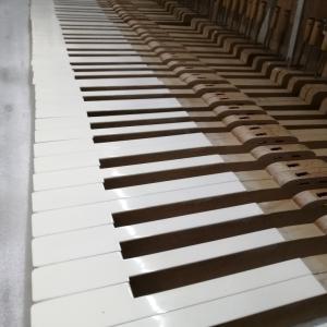 鍵盤まわり
