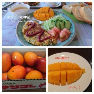 県民に嬉しいマンゴーあたり年~2020♫
