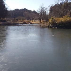 池の氷を歩く