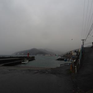 ほぼ暴風雨の港で
