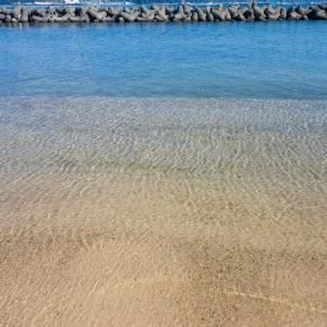 日本海の水