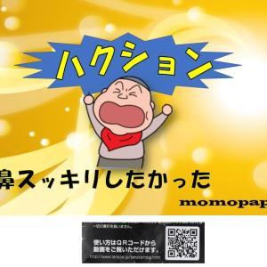 「MBG HX 鼻スカットワックス」モニター様30名募集!!