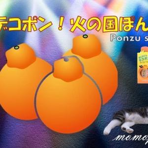 「デコポン!火の国ぽん酢」のレシピブログorインスタ投稿モニター20名様募集!