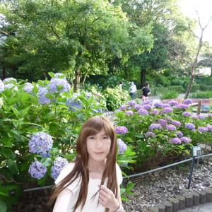 性海寺の紫陽花♪#2