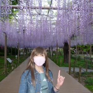 紫映える花♪#1
