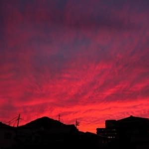 夕~焼~け~小焼け~の赤とんぼ~