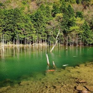 4月6日 (火)7日(水) は定休日です。