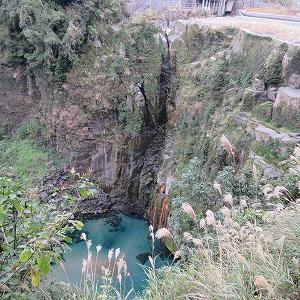 九州最南端 雄川の滝の生き物