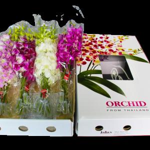 お袋の誕生日に蘭の花束を贈る