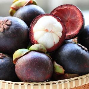 手作りマンゴスチンジャムとヨーグルトの至福