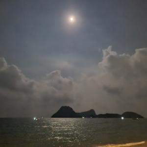 静かな月夜に海を見る