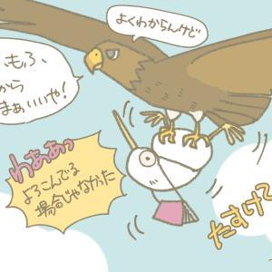【漫画】あひるちゃんとキウイちゃん(7)