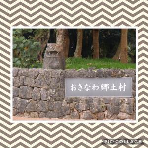 *やっぱりここ!美ら海水族館へ そして、沖縄郷土村!前半*