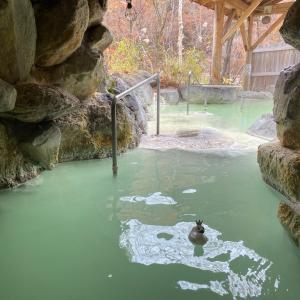 スタエフ更新 紅葉露天風呂とひとり温泉、人気宿予約裏技など