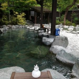 リニューアルしたおがわ温泉花和楽の湯へ