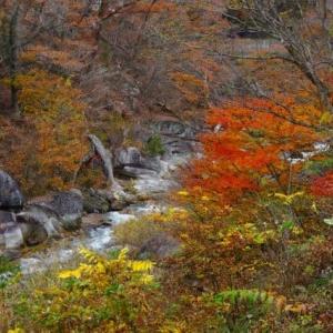20-11.20blg:昇仙峡の紅葉
