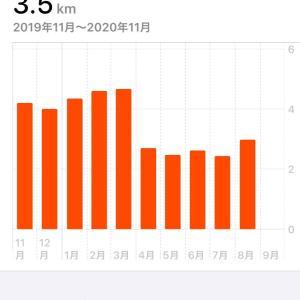コロナに影響された、1日に歩く歩数と距離