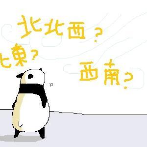 風を読みたい大熊猫・・・・・