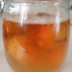 杏酵母が元気に発酵してます!