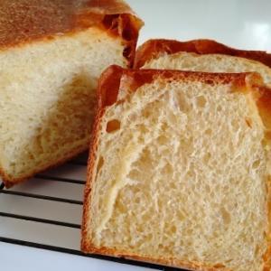 ブリオッシュ食パンとベーグル by レーズン酵母