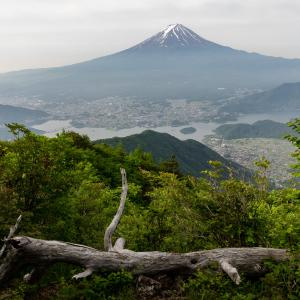 梅雨入り前の晴れに御坂黒岳登山