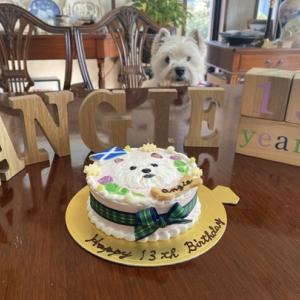 アンジの誕生日ケーキ