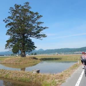 柳川サイクリング