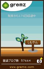 グリムスの木1本目、2本目の植林場所が判明!!