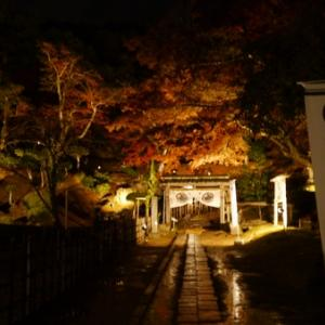 池田家墓所でライトアップ