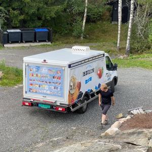 アイスクリームの移動販売