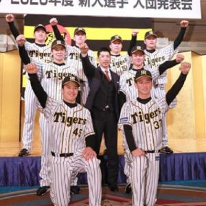 阪神1位西純矢、鯉党でしたが車中は常に六甲おろし!阪神2位井上の夢は本塁打王!背番号32!