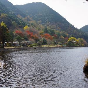 鹿児島県へ紅葉ツーリング(藺牟田池)